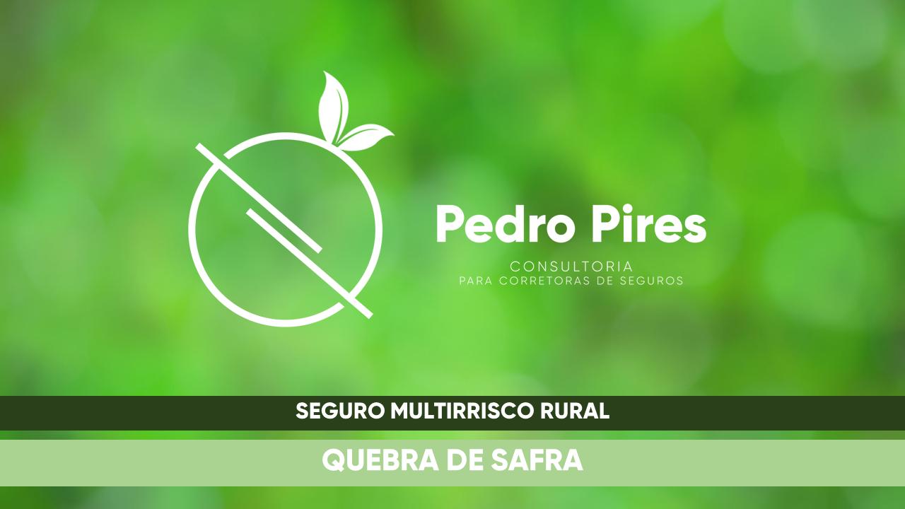 Pedro_Pires_Slide (1)