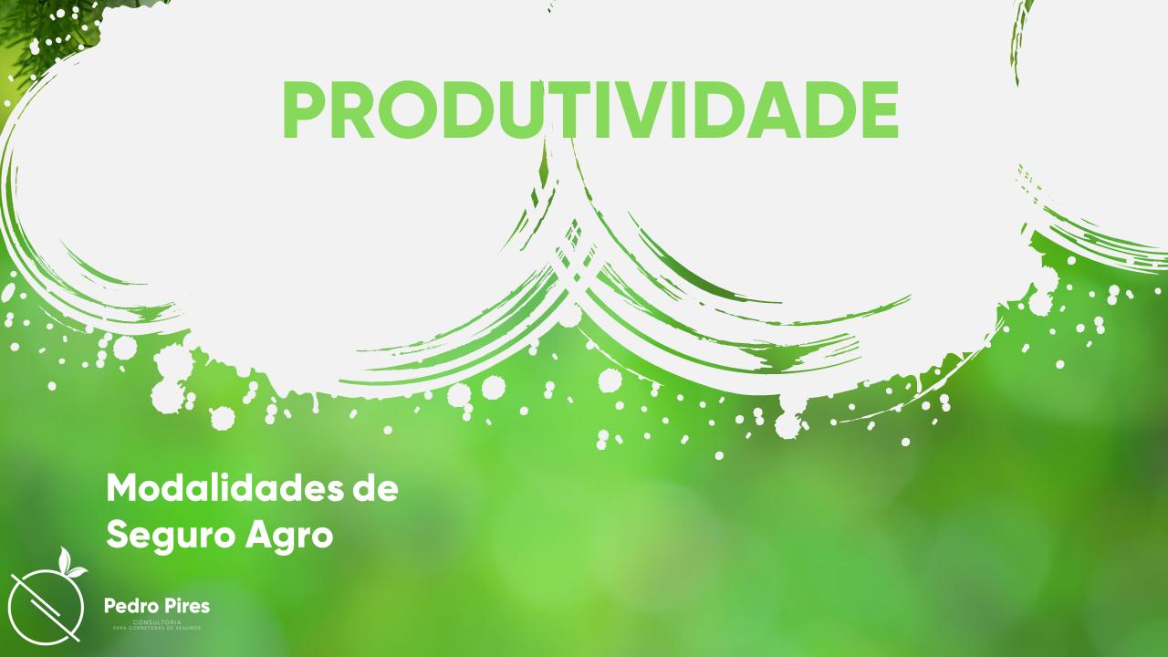 Pedro_Pires_Slide (10)