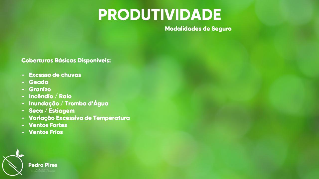 Pedro_Pires_Slide (14)