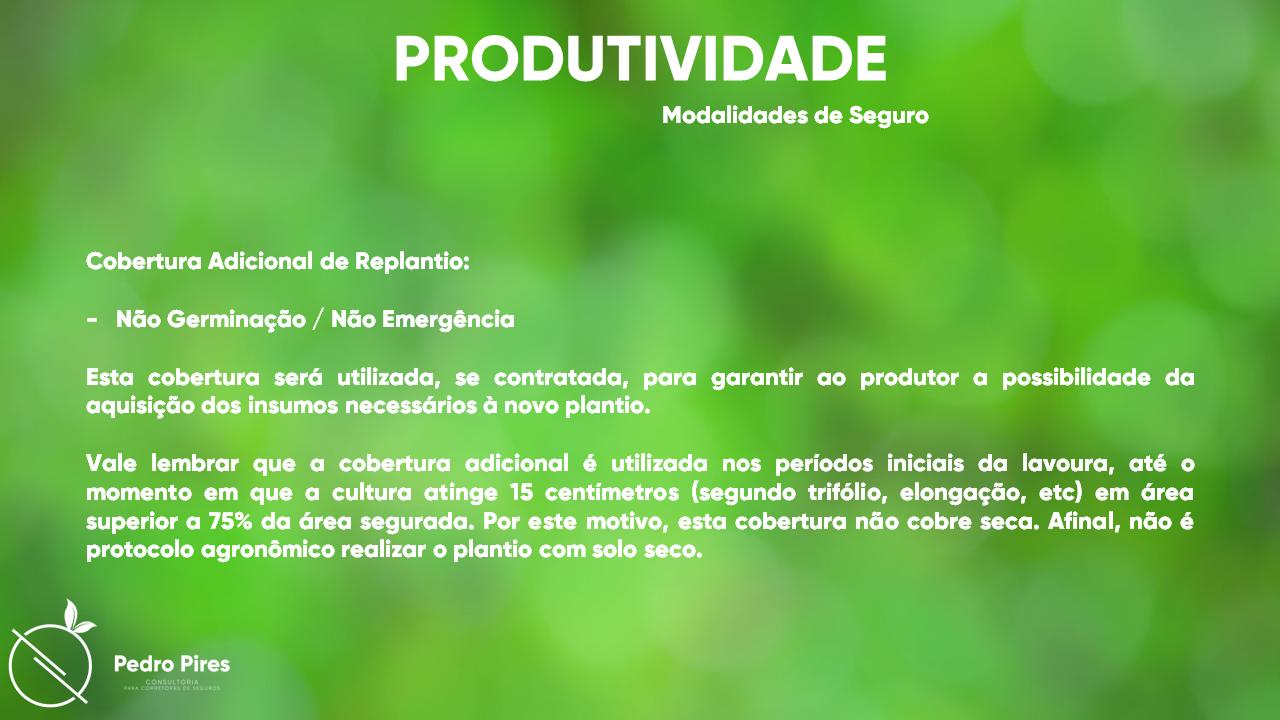 Pedro_Pires_Slide (15)