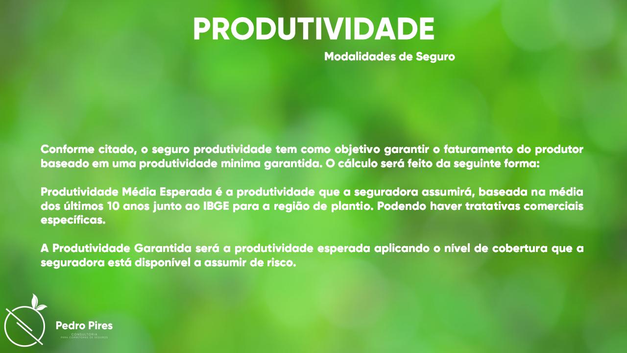 Pedro_Pires_Slide (17)