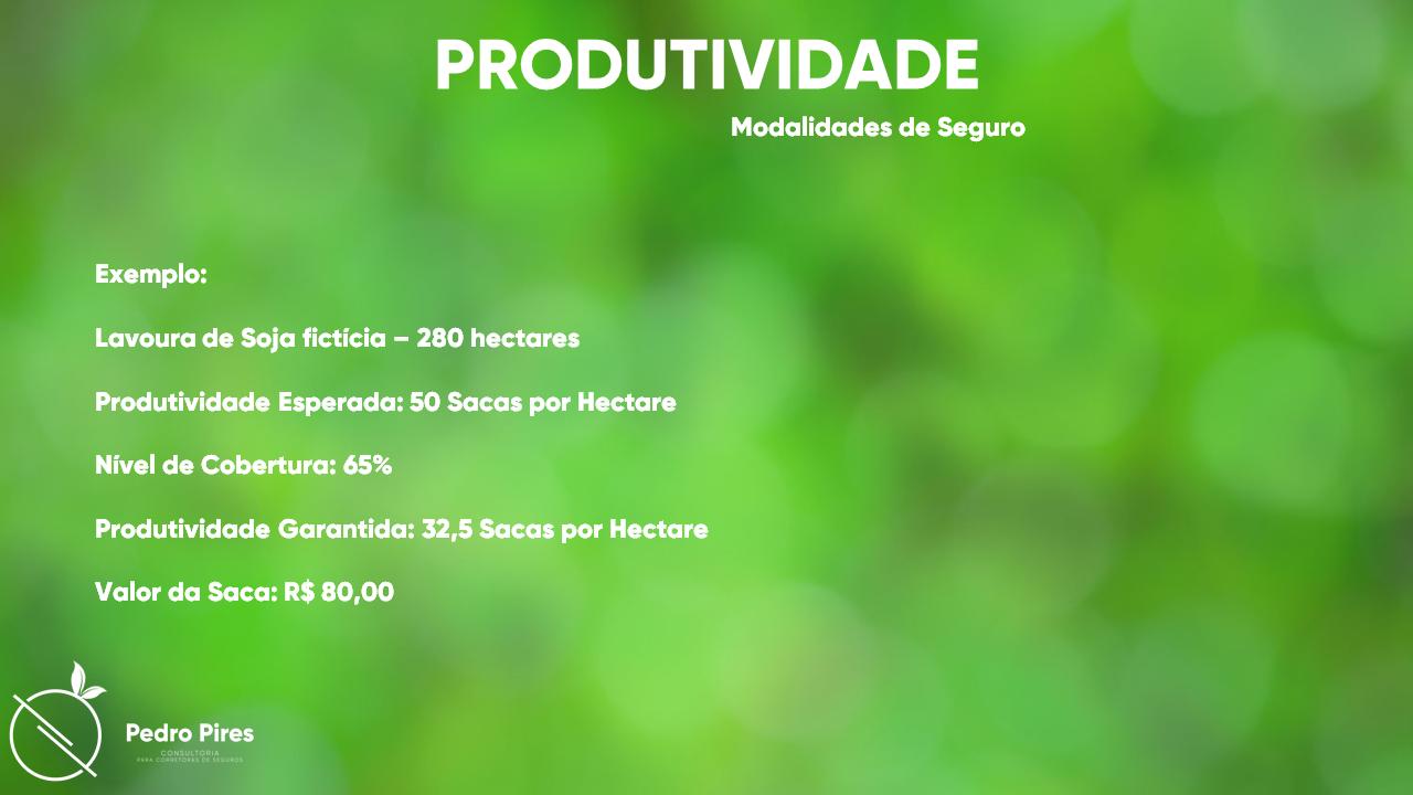 Pedro_Pires_Slide (18)