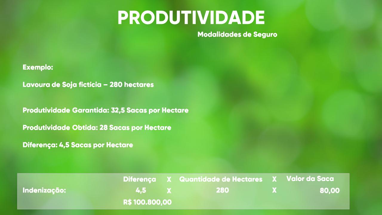 Pedro_Pires_Slide (20)