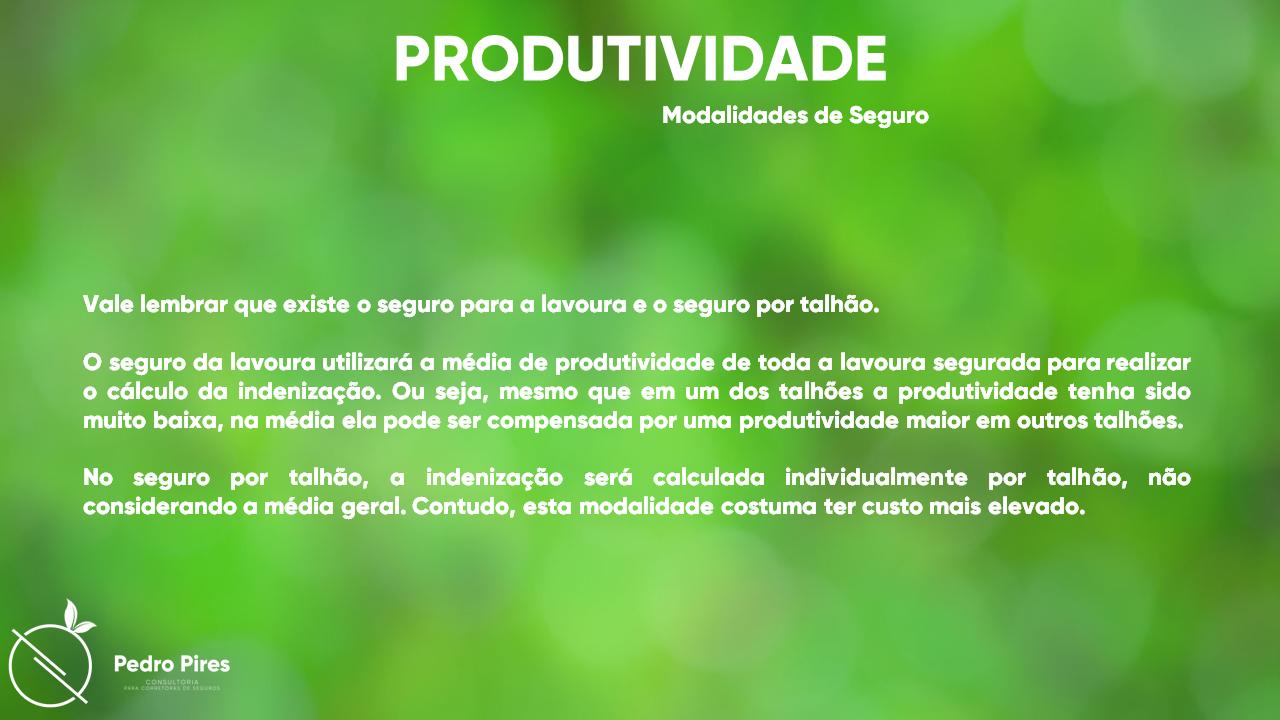 Pedro_Pires_Slide (21)