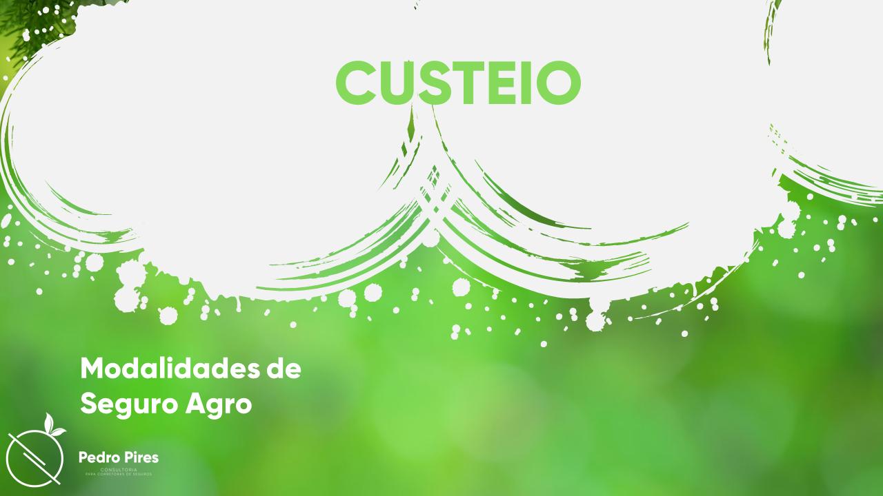 Pedro_Pires_Slide (23)