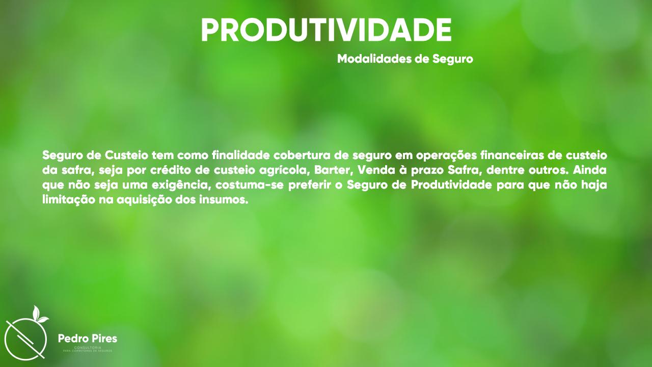 Pedro_Pires_Slide (25)