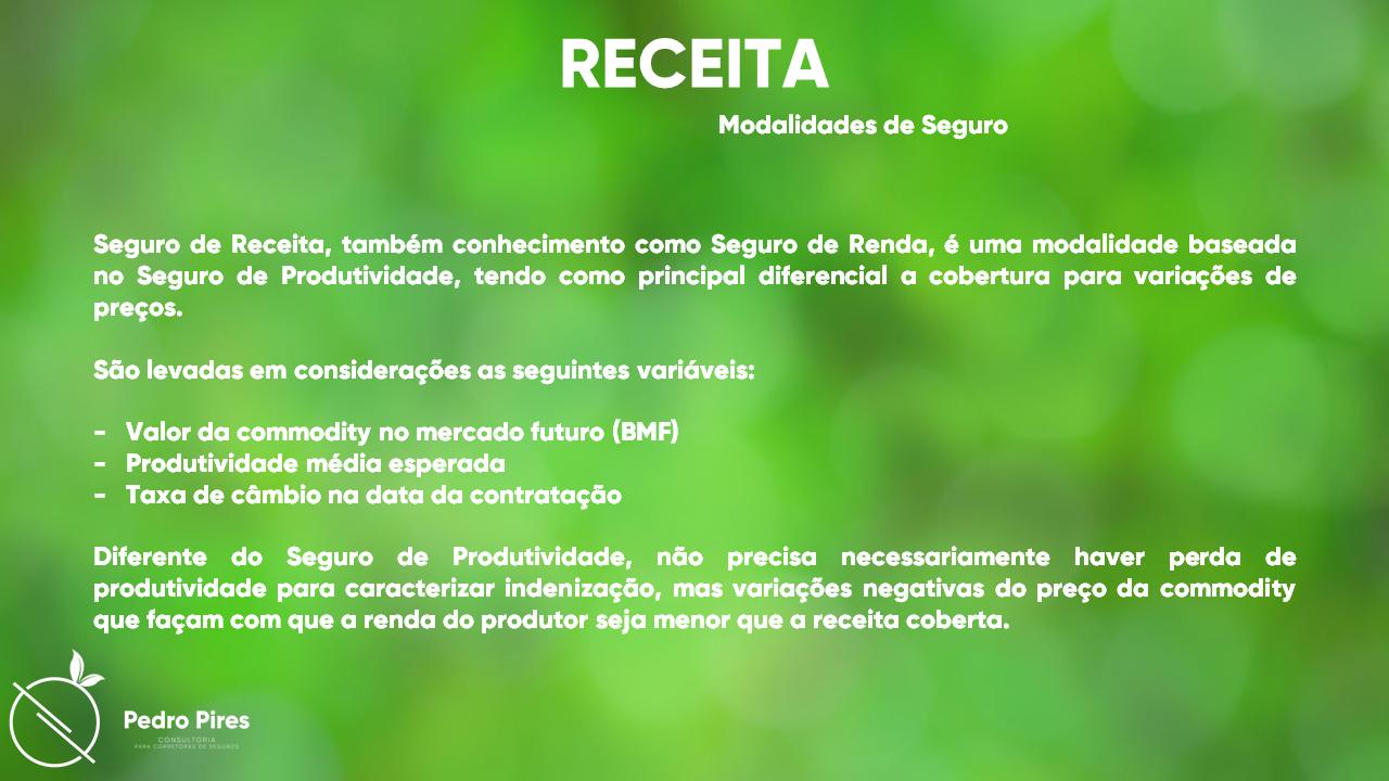 Pedro_Pires_Slide (27)