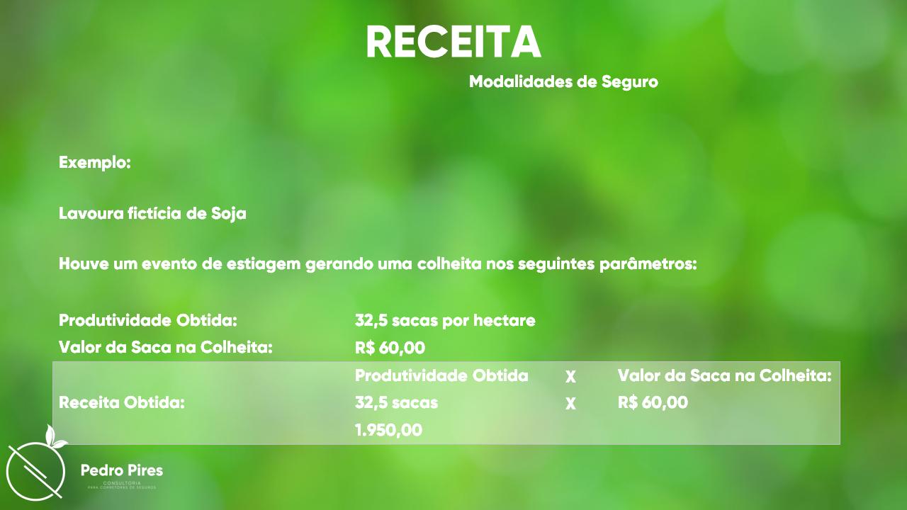 Pedro_Pires_Slide (29)