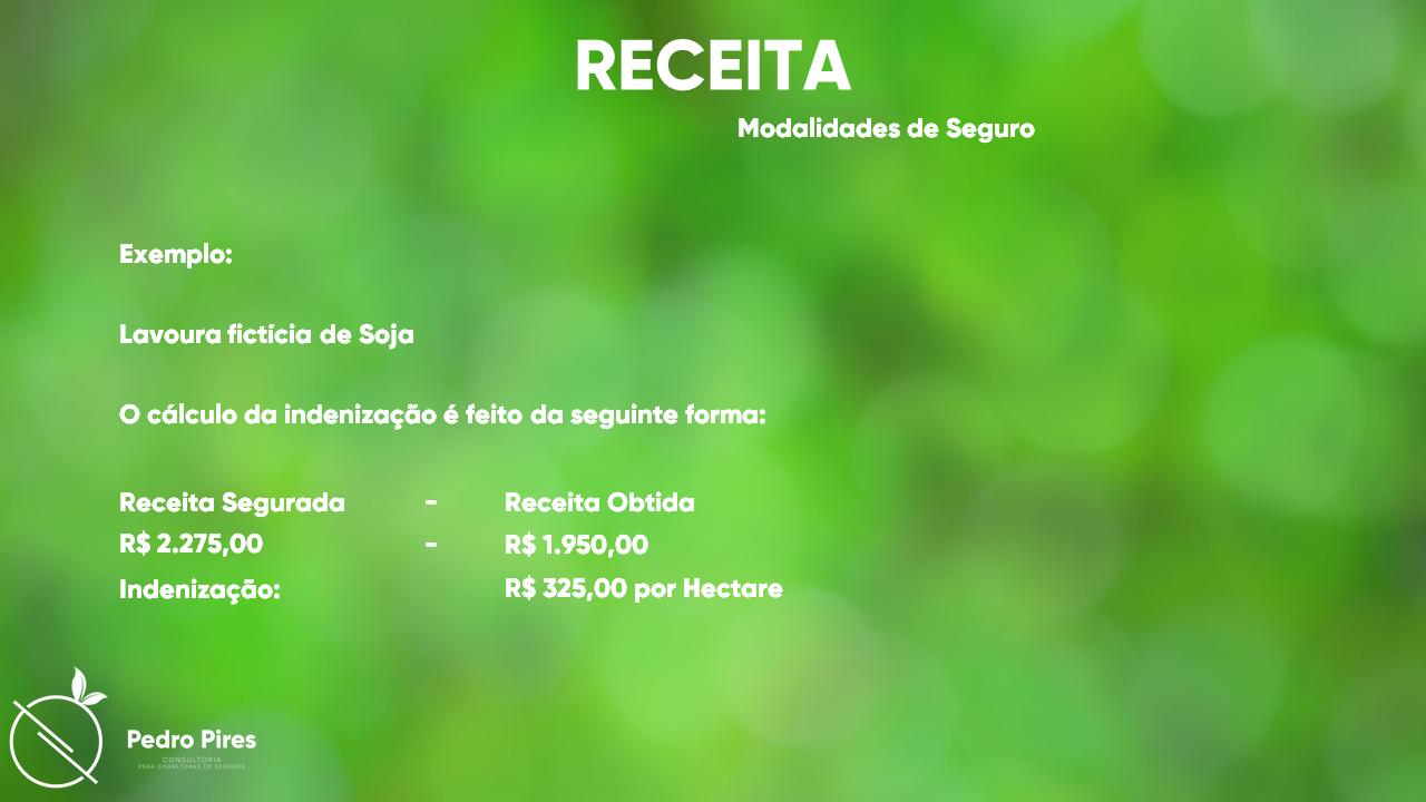 Pedro_Pires_Slide (30)