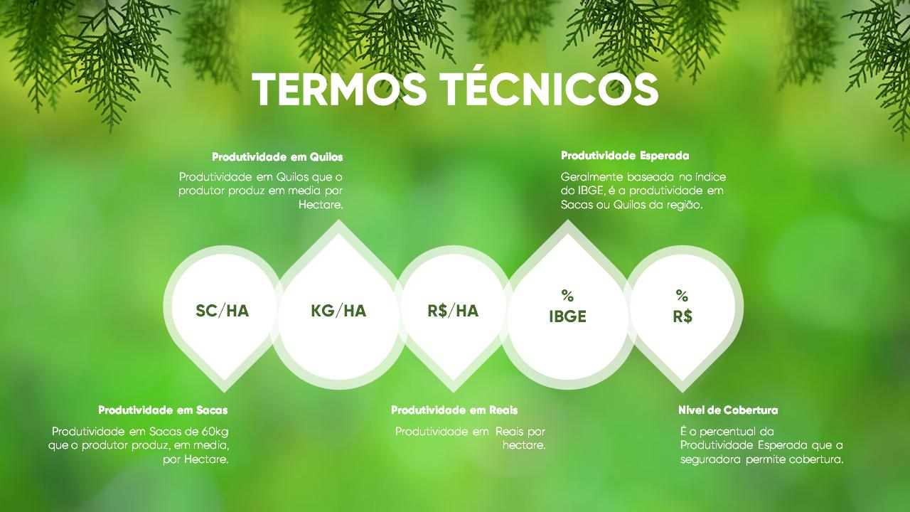 Pedro_Pires_Slide (5)