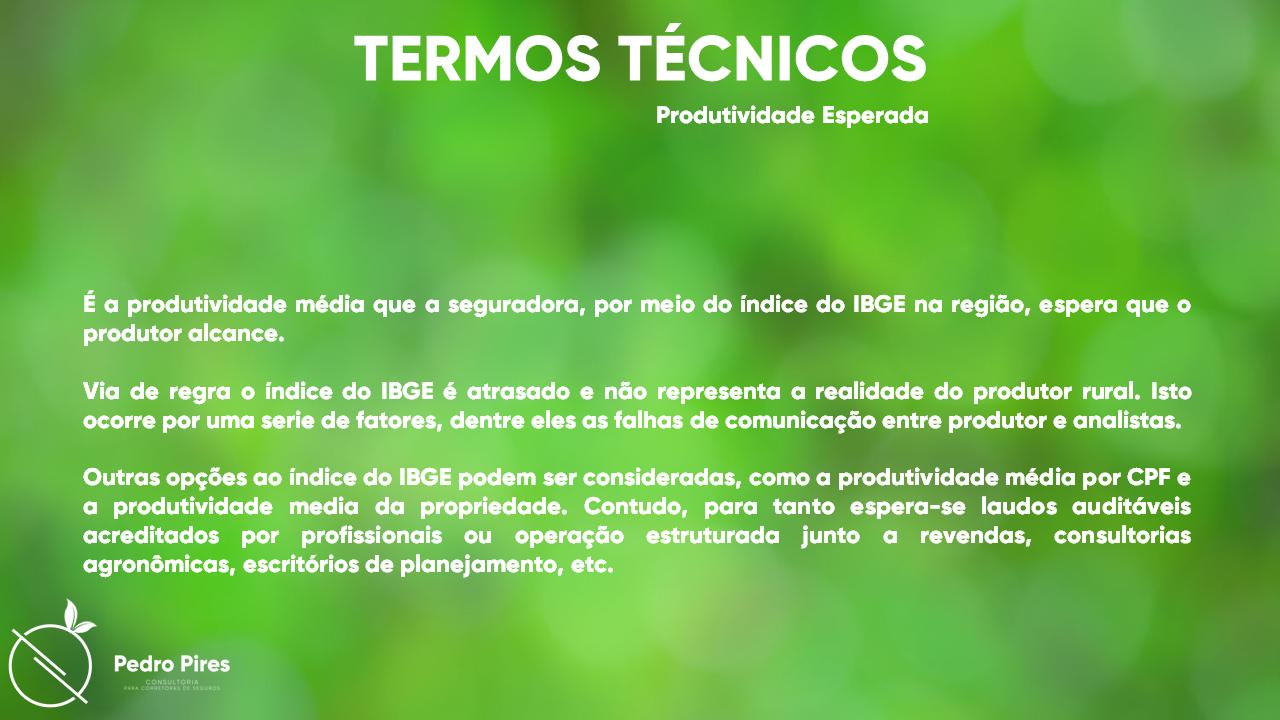 Pedro_Pires_Slide (8)